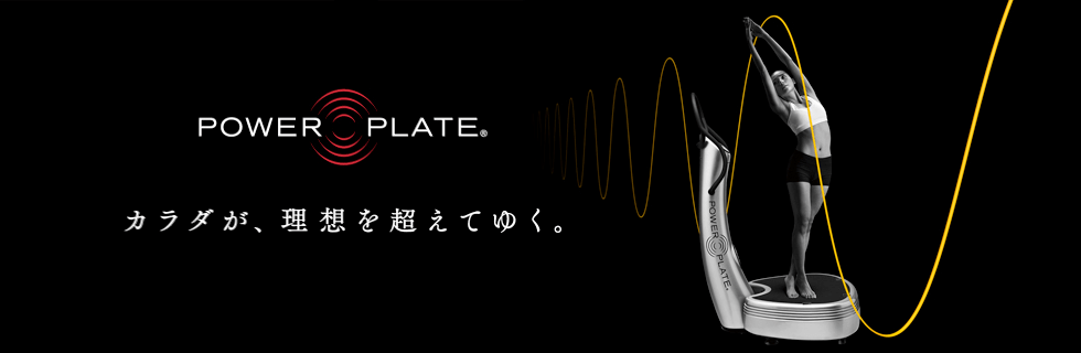 PERSONAL POWER PLATEとは